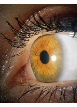 Jantarové oko - Lucie Stránská